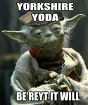 Yorkshire Yoda